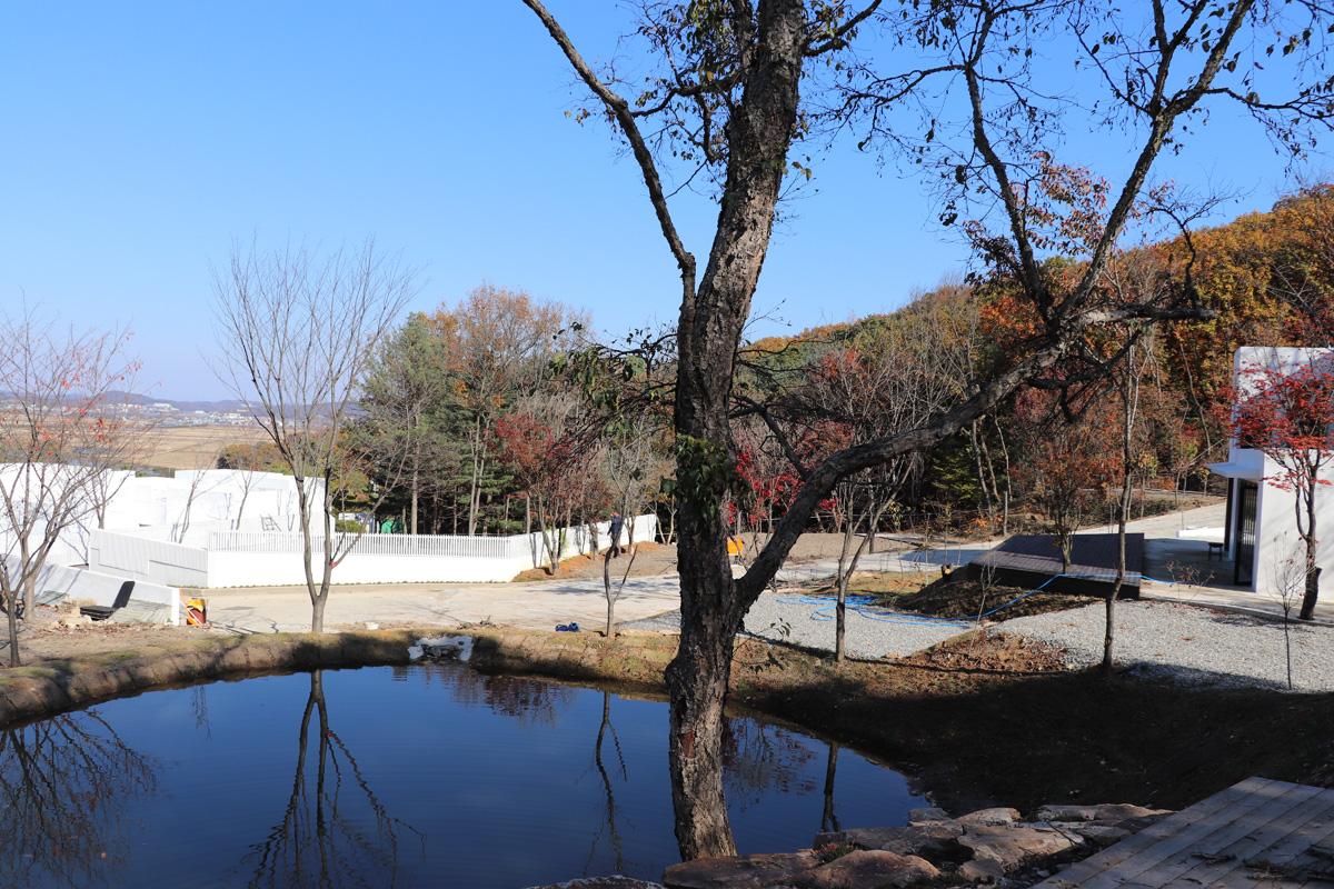 연못.jpg
